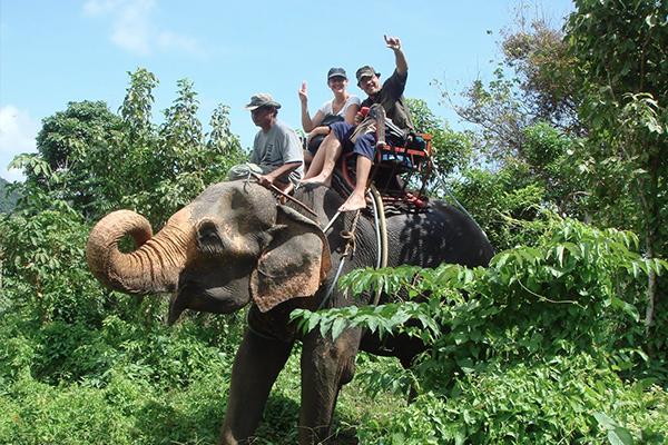 elephant-trakking